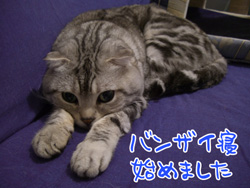 blog-12.9-1.jpg
