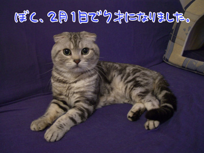 blog-2.22-2.jpg