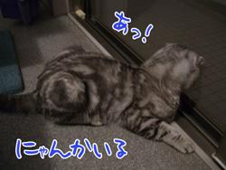 blog-7.24-4.jpg