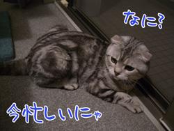 blog-7.24-5.jpg